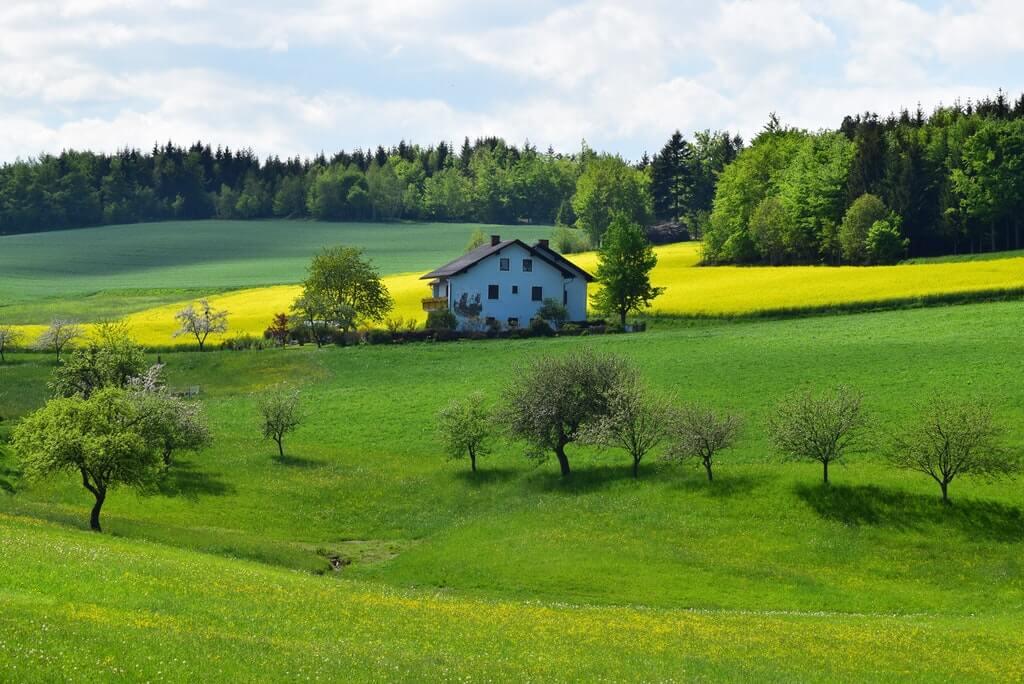 На фото земельный участок с домом.