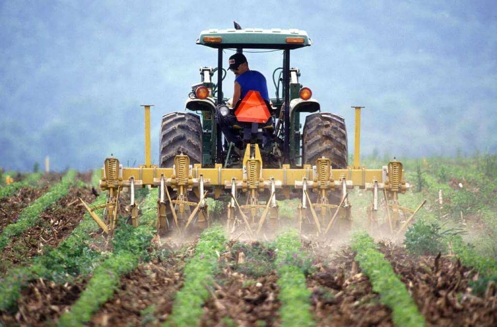 На фото трактор на поле.
